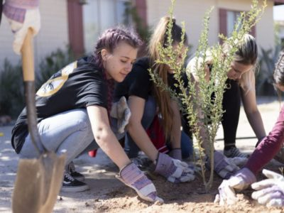young volunteers planting a tree