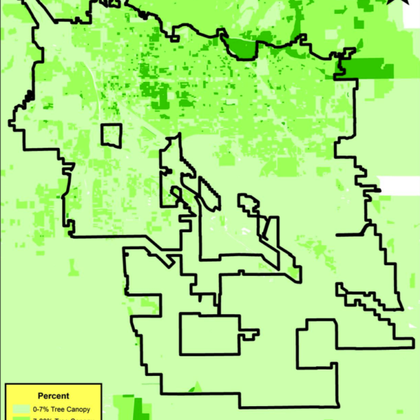 GIS Map of Tree Canopy